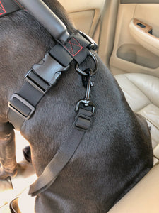 geartac auto belt seatbelt restraint system is for a rear hook dog harness