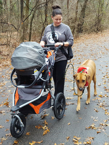 Geartac hands free dog leash and dog walking harness system is awesome for walking with your kids