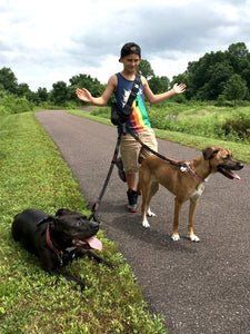 Geartac hands free dog leash and dog walking harness system is awesome for multiple dogs