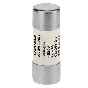 CYLINDRICAL FUSE GG 22X58MM 500V 80A