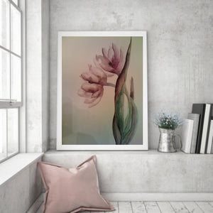 "Watercolor, Limited-Edition, Signed, Matted Prints, ""Blushing Willow"" - Blushing Willow Design Co."