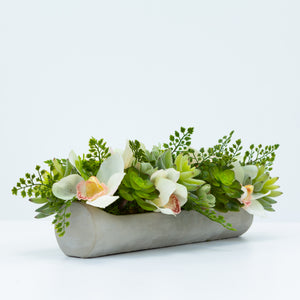 Diane James Echeveria and Orchids in Cement Platter