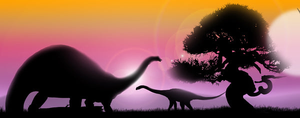 Sunset with Dinosaurs Silhouette