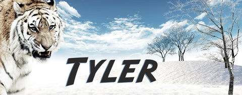 Tiger in Snowfield