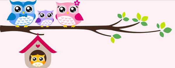 Birds-Owl Family Pink