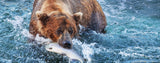 Wild Animals-Brown Bear Catching Fish
