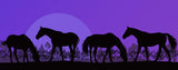 Purple Silhouetted Horses