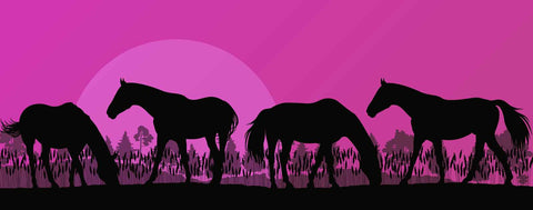 Pink Silhouetted Horses