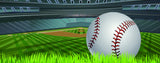 Baseball-Illustration of Baseball on Field
