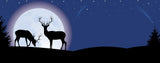 Deer-Moonlit Deer