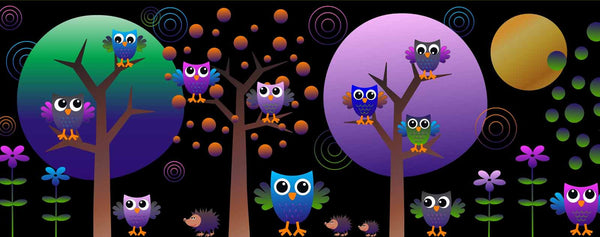 Birds-Colorful Owls at Night