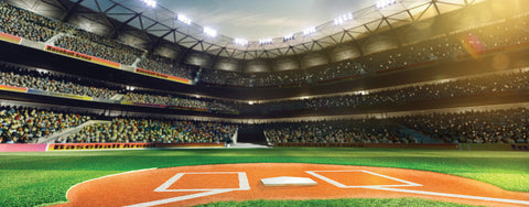 Baseball-Professional Baseball Field