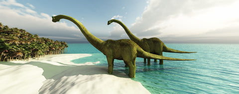 Two Longneck Dinosaurs on Beach