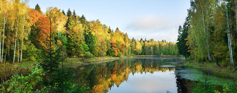 Autumn Lake Morning