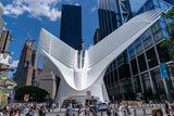 The Oculus: World Trade Center