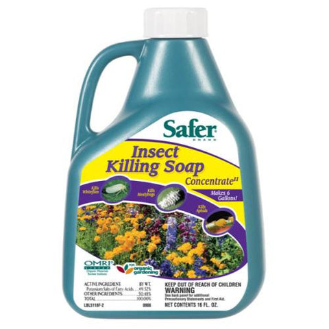 Safer Insect Killing Soap II  Conc. 16 oz (6/Cs)