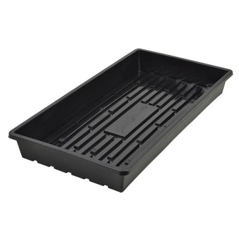 Super Sprouter Quad Thick 10 x 20 Tray - No Hole (25/Cs)