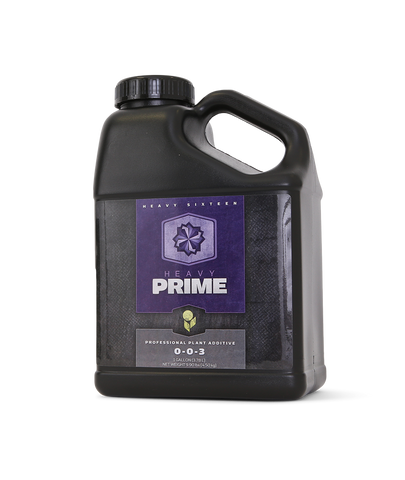 Heavy 16 Prime Concentrate 2.5 Gallon (10L), 2/cs