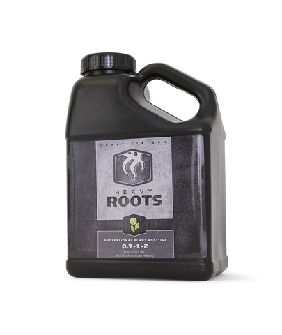 Heavy 16 Roots 16OZ (500ML), 12/cs