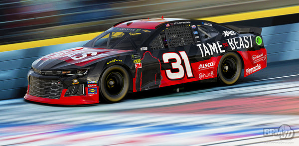 Tame the Beast NASCAR Race Car Tyler Reddick RCR Racing