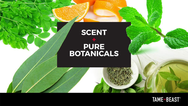 Scent plus pure natural and organic botanicals