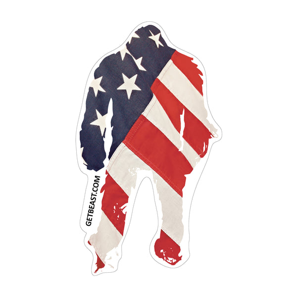 Tame the Beast Stickers in Red White and Blue America Flag USA USA