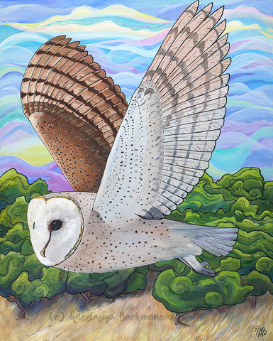 barn owl painting, follow the sun art, anastasiya bachmanova