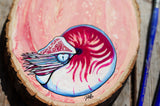 chambered nautilus acrylic painting, wall art