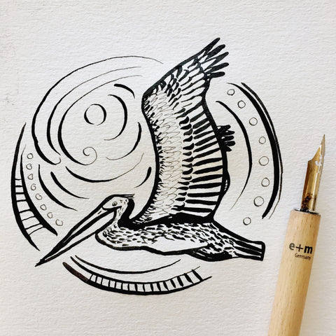 Brown Pelican Drawing - Inktober - Follow the sun art