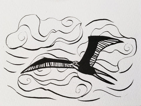 Frigate Bird illustration, inktober, follow the sun art