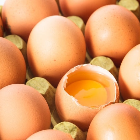 Eggs Are High In Protein