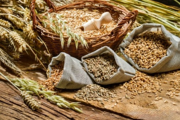 Grains Rich in Fiber