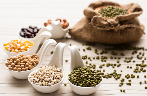 variety of plant based proteins