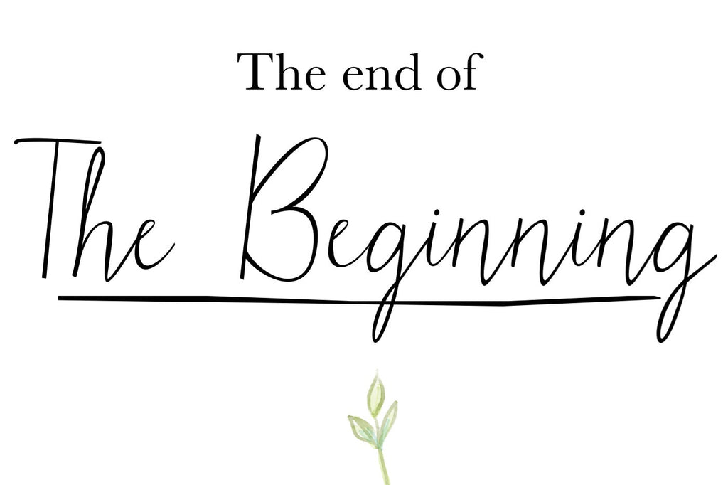 Adoption: The end of the Beginning