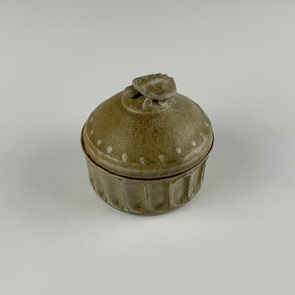 Willem Gebben small lidded box, turtle