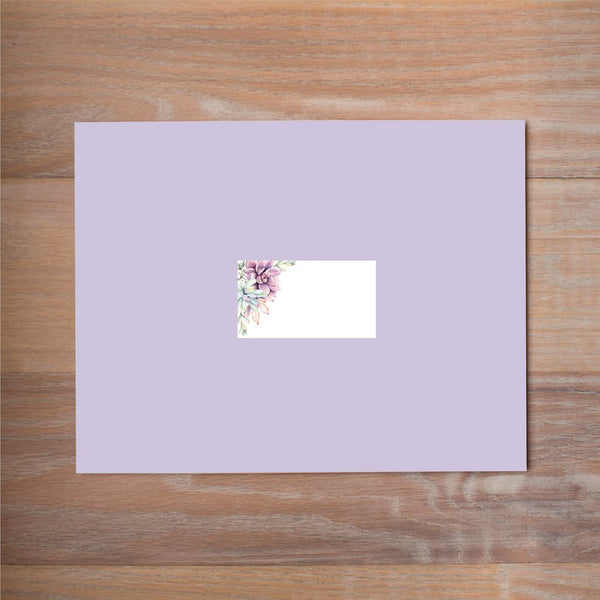 Soft Succulents mailing label shown on Plum presentation envelope