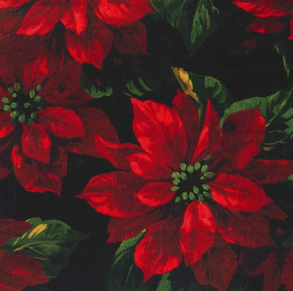Scarlet Poinsettia on Minky