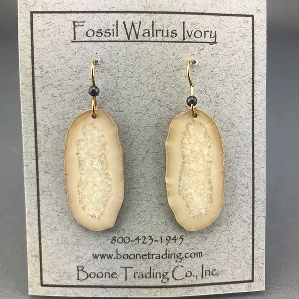 Fossil Walrus Earrings Pair 11