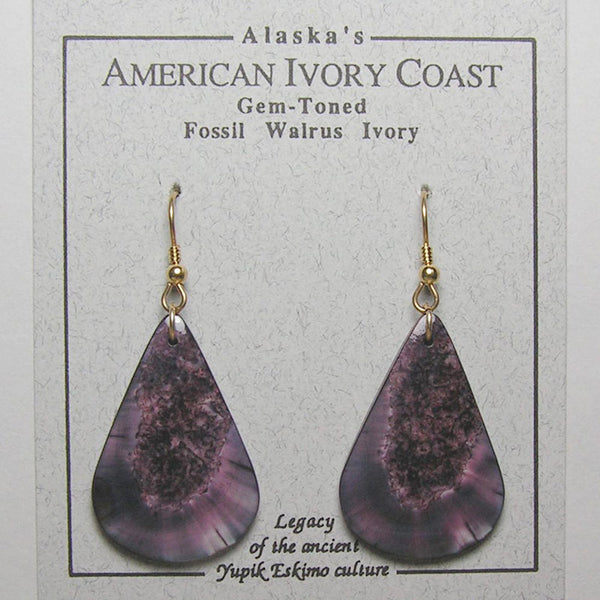 Fossil Walrus Gemtone Earrings Pair 17
