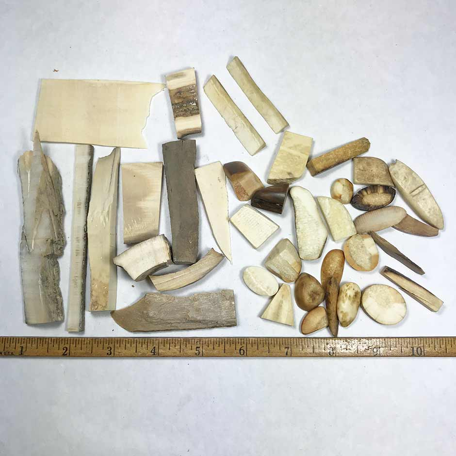 Mixed Ivory Pieces Lot 81