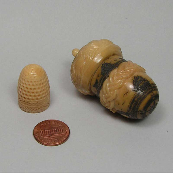 scrimshaw tauga nut thimble holder with thimble