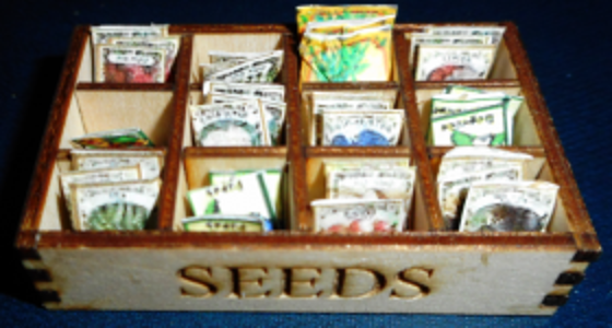 Seed Boxes And Seeds Kit Set Of 3