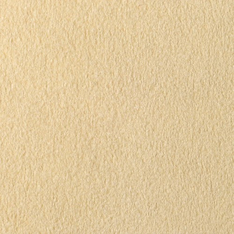 Luxurious Cream Carpet