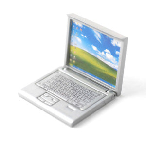 Detailed Silver Laptop