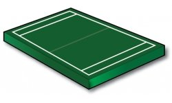Standard Football Field PLUS Goal Lines! - Port-a-field