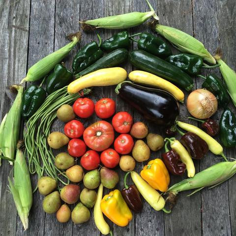CSA SHARES (every week delivery)