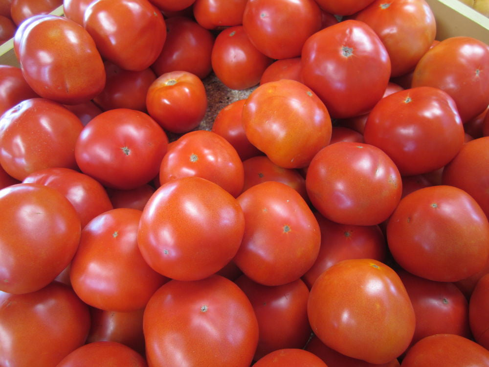 Tomatoes Red  per pound