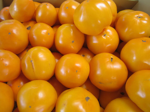 Tomatoes Yellow  per pound