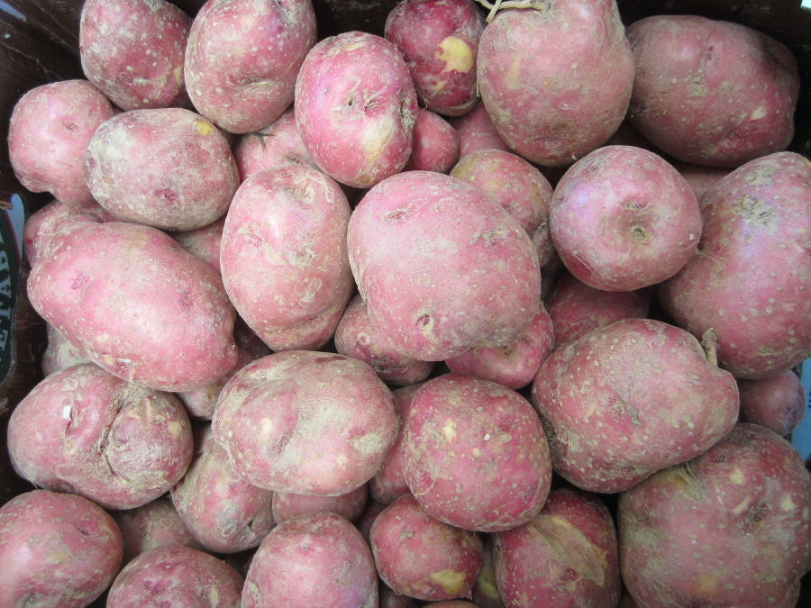 Potatoe Red  per pound
