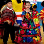 "Girls 1 Layer / 10"" Skirt Mexican Chiapaneca Fino Dress for Girls Black"